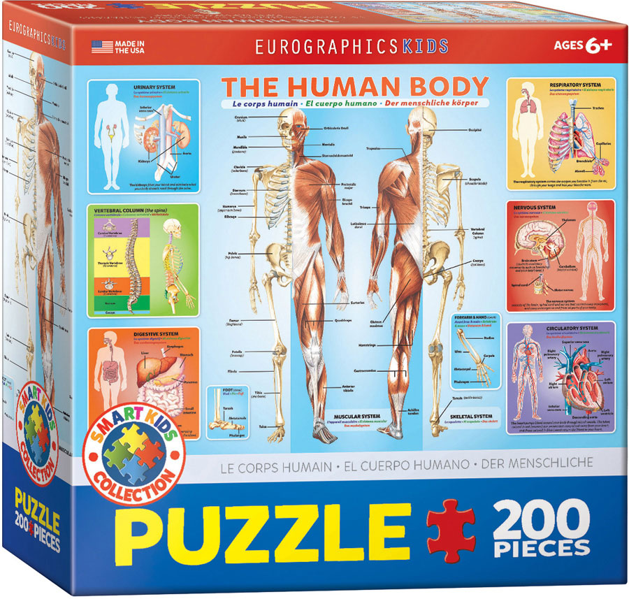 Periodic table of elements jigsaw puzzles at eurographics urtaz Image collections